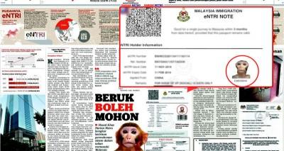本地一家马来文媒体周三报道,以猴子头像和假资料都能获得签证批准。