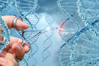 """贺建奎宣称自己""""首制""""基因编辑婴儿抗爱滋病,遭中国国内及国际学术界狠批。"""