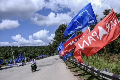 金马仑补选,路旁出现旗海战。(马新社照片)