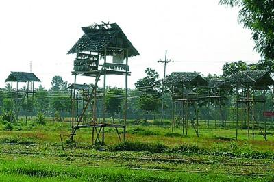 这种高亭在外南梦处处可见,偶尔看到居民坐在高处休息。