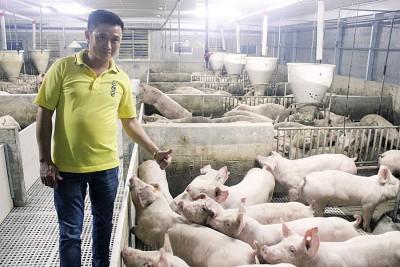 王浚滨:猪农们能做的非常有限,仅能做好自家本分,包括减少不相关人士与猪只接触及加强消毒工作。