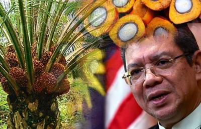 外交部长赛夫丁重申大马确保棕油永续生产的决心。