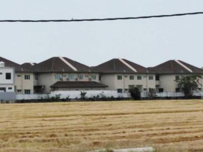 这一季天气干燥少雨,收割后稻田看起来干枯。