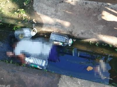 印裔妇女周五被邻居发现倒毙在住家后巷的10尺深沟渠内。