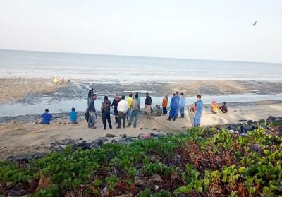 玻璃市新港海岸(kuala sungai baru)周五早晨盖8常,于该地红树林发现大批满身泥泞的儿女和小,举报疑是2020欧洲杯竞猜难民偷渡来马。