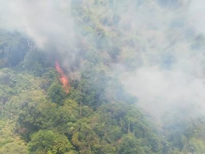 由于天气炎热,加上风势强大,导致林火扩大蔓延。